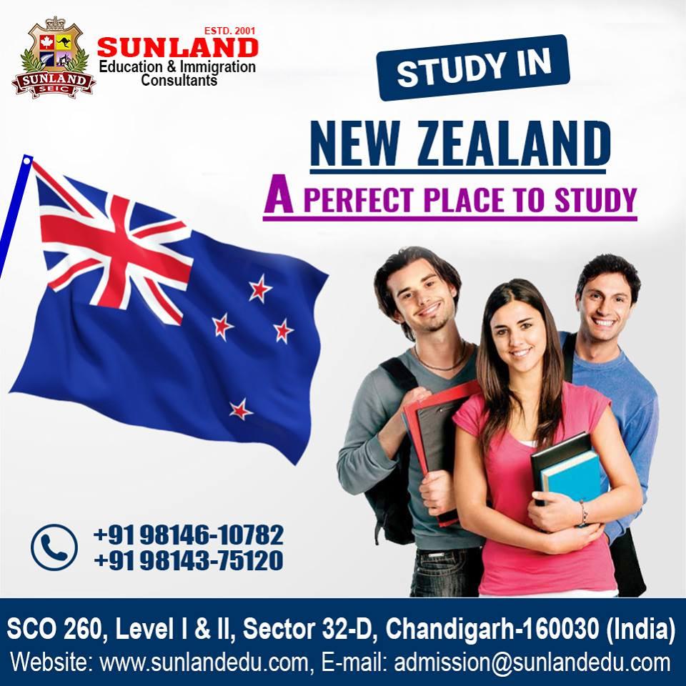 visa india website