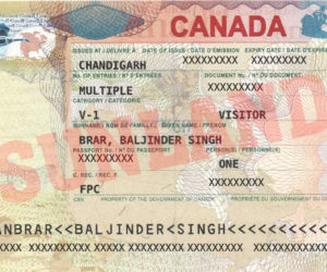 Spouse Visa Expert in Chandigarh | Sunland Education
