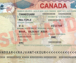 Canada Visa Experts in Chandigarh   PR for Canada   Sunland Education