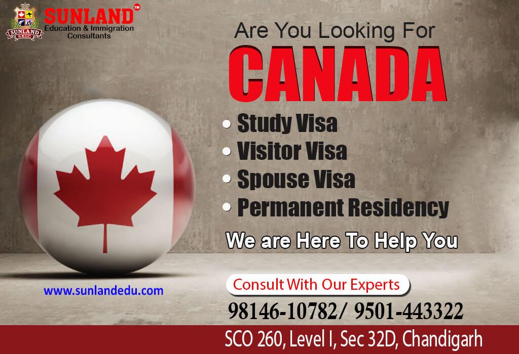 Canada Visa Consultant in Chandigarh